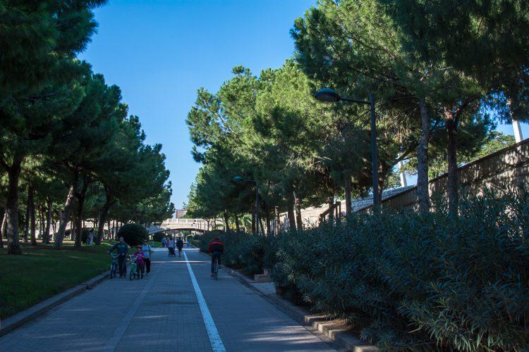 unterwegs im 9 km langenTuria-Park