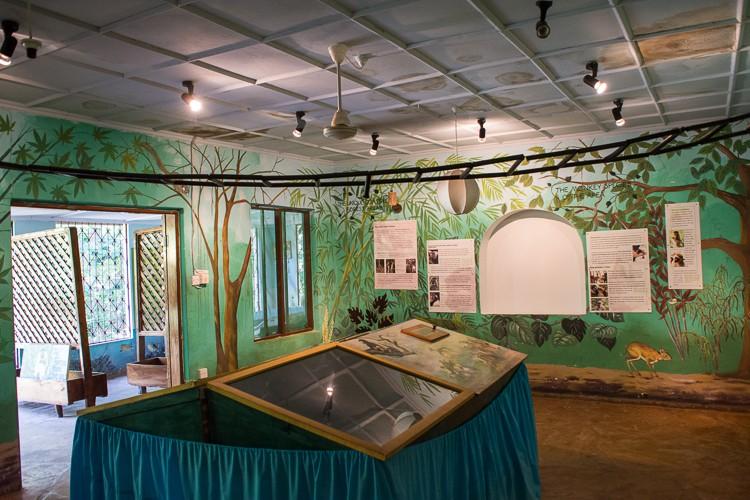 Besucherzentrum im Colobus Trust