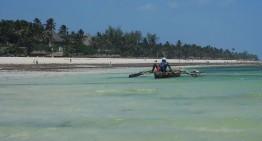 Meine 5 Ausflugstipps rund um Diani Beach