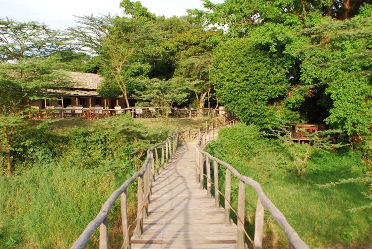 Brücke über den Talek Fluss zum Hauptzelt