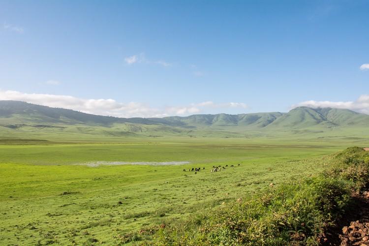 am Rand des Ngorongoro Schutzgebietes