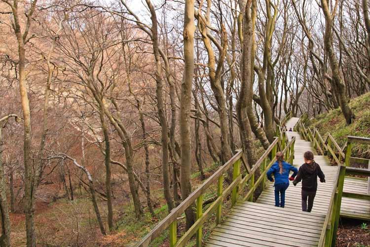 GoOnTravel Die Treppe hinab zu den Kreidefelsen