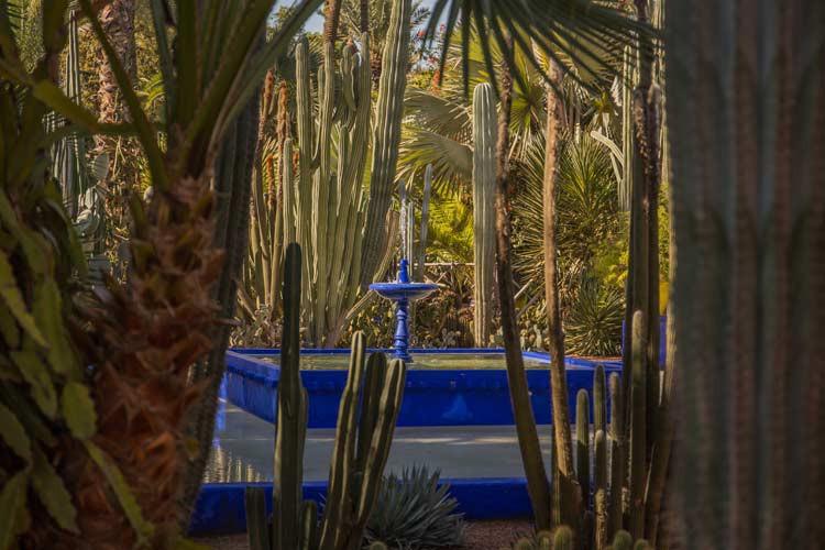 GoOnTravel Marrakesch Jardin-Majorelle