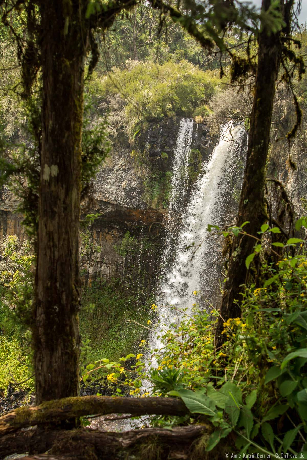 Chania Wasserfall lässt sich im Aberdare Nationalpark sehr gut zu Fuß erreichen.