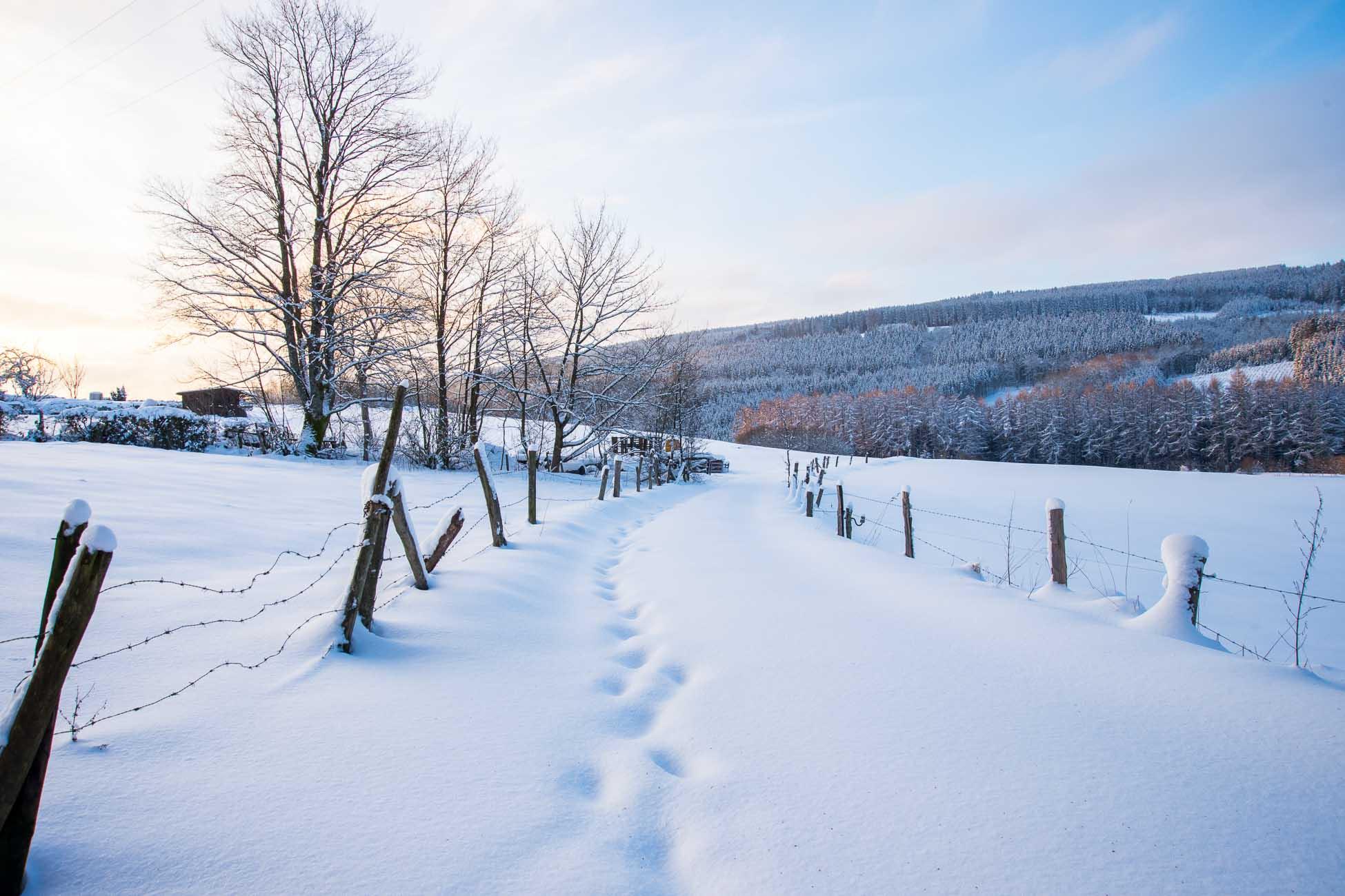 Ardennen Schnee Winterlandschaft