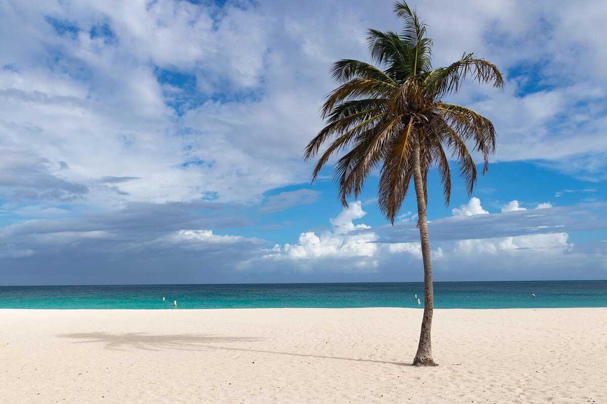 Wohl einer der schönsten Strände weltweit - der Eagle Beach