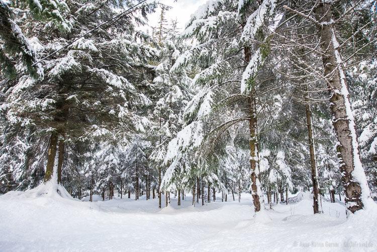 Winterwonderland zum Verlieben