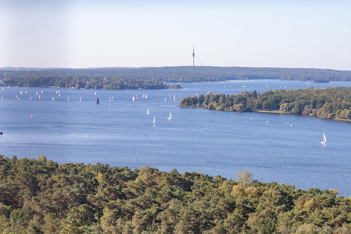 Blick auf die Havel und Wannsee vom Grunewaldturm