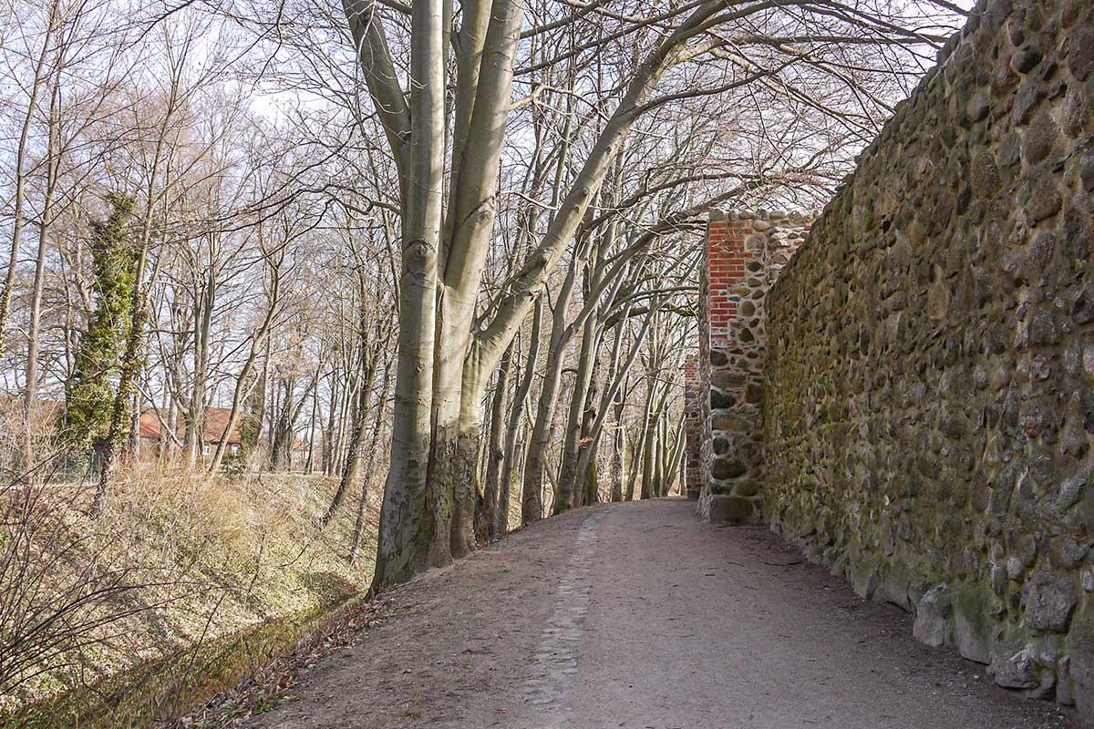 Entlang der Bernauer Stadtmauer