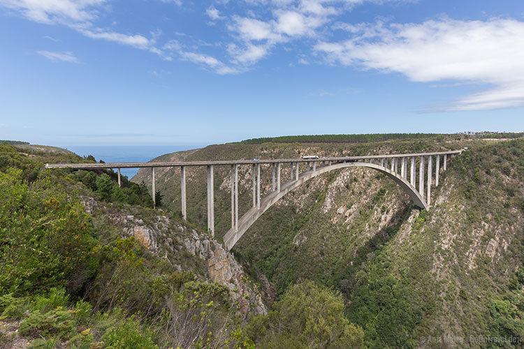Die Bloukrans Bridge an der Garden Route