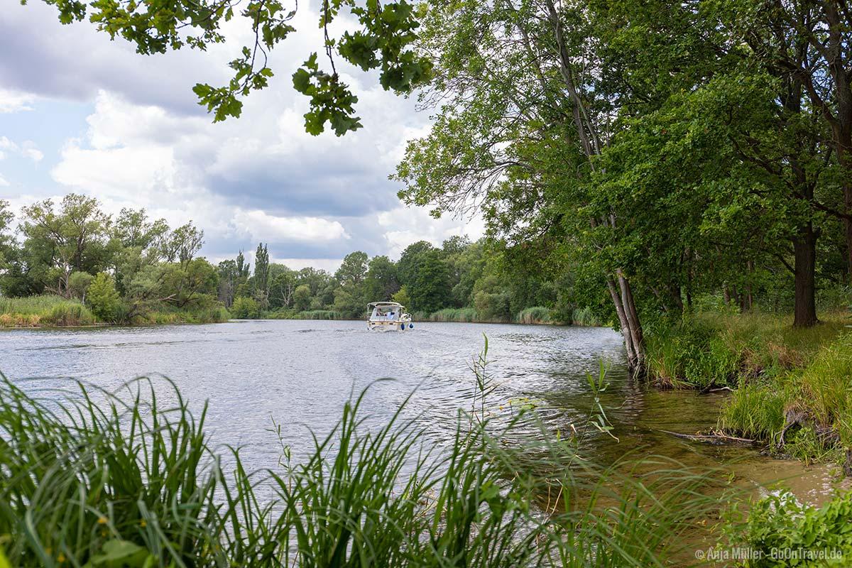 Picknick mit Blick auf die Havel