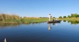 Die erste Reise nach Botswana in Afrika – 11 Fragen und Antworten