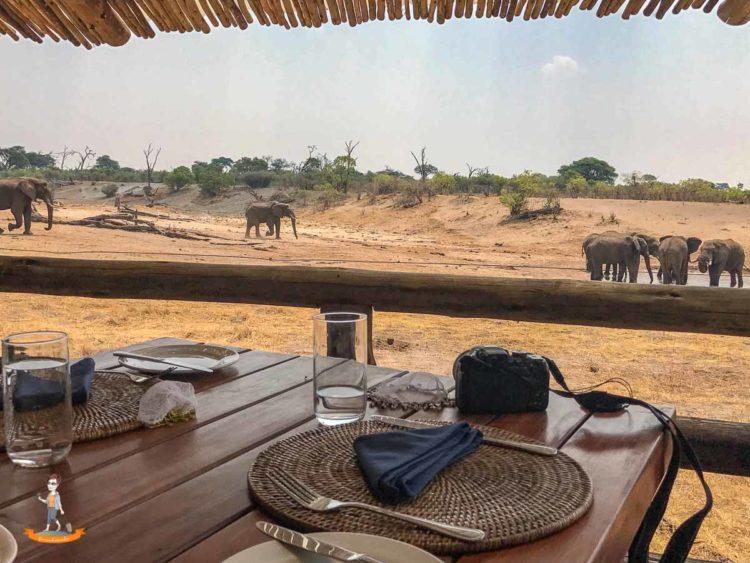 Essen mit Aussicht im Savute Safari Camp
