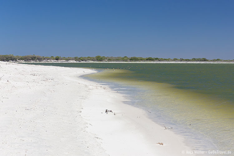 Die Brackwasser-Lagune im De Hoop Nature Reserve