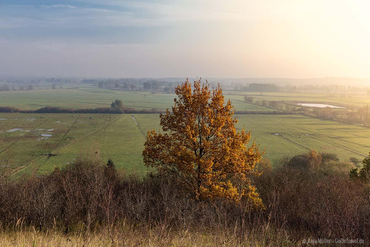 Am Aussichtspunkt in Hohenfinow