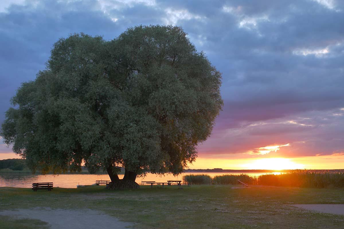 Sonnenuntergang an der Badstelle am Grimnitzsee