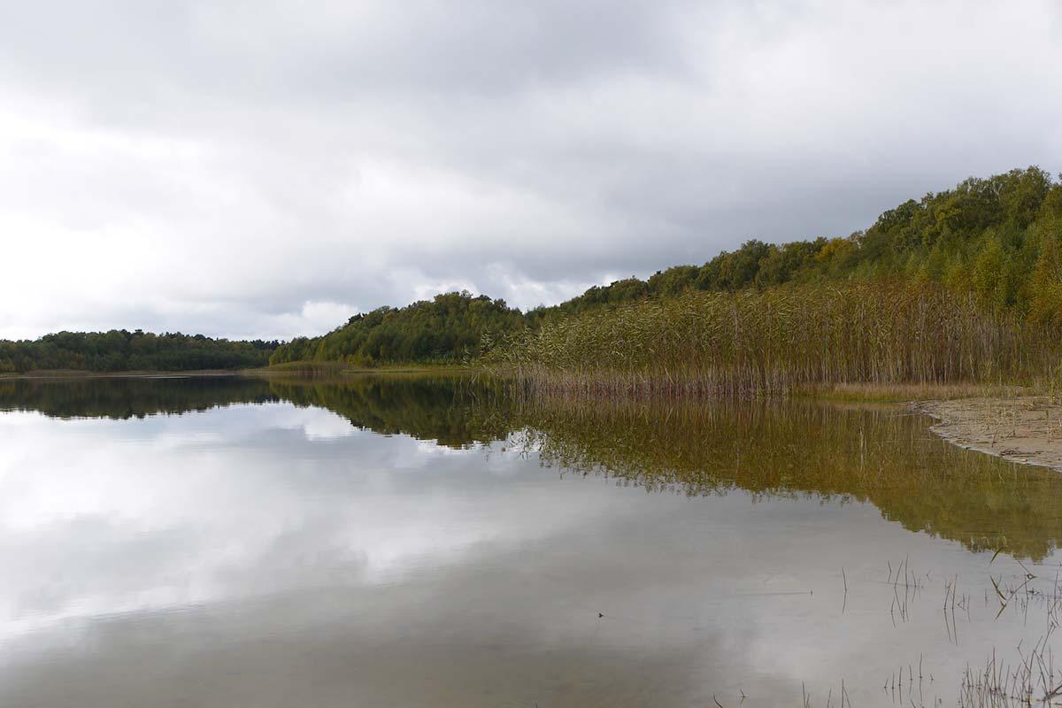 Ufer am großen Pinnowsee
