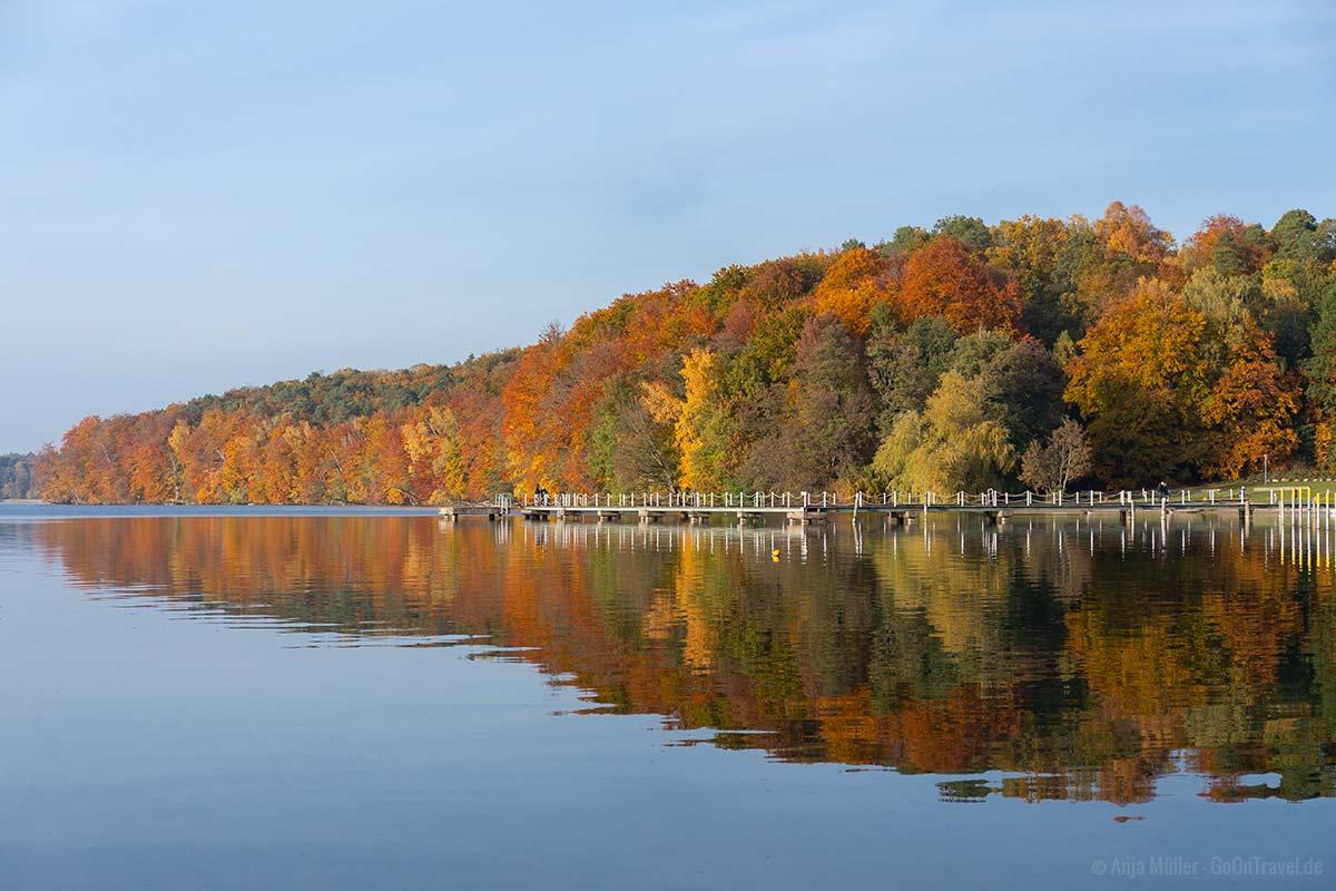 Der Werbellinsee im Herbst