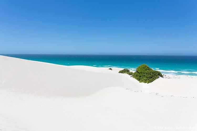 Feinster weißer Sand in der Dünenlandschaft im De Hoop