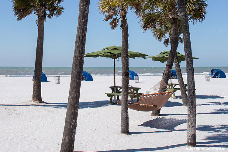 Beachlife Florida