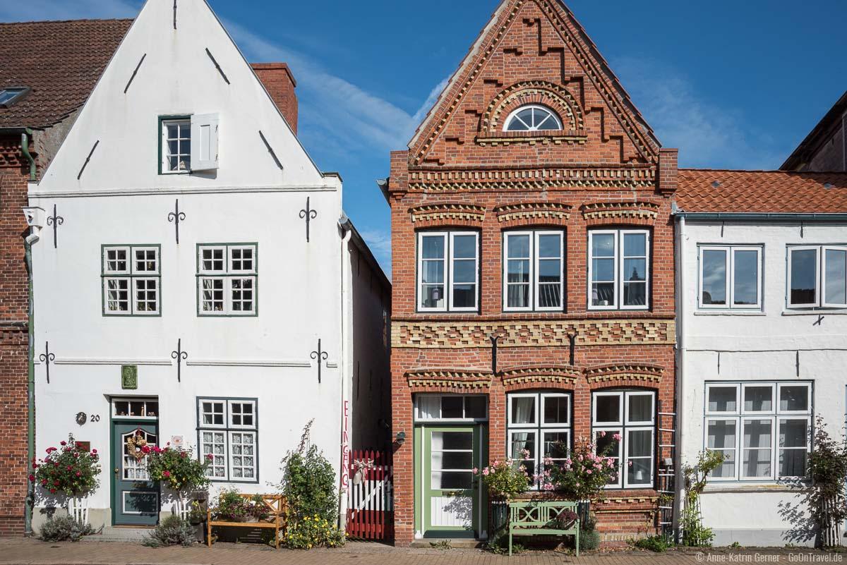 Rosenstöcke prägen wie die Grachten das Stadtbild von Friedrichstadt