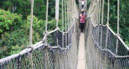 Gelebte Angst im Regenwald von Ghana!