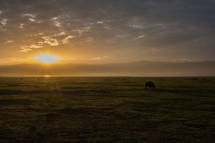 Der Tag beginnt im Ngorongoro Krater