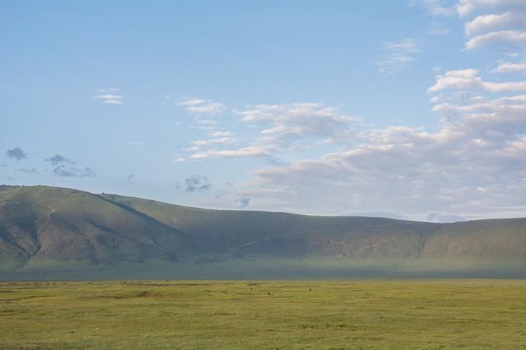 die tiefgrünen Hänge des Ngorongoro Kraters