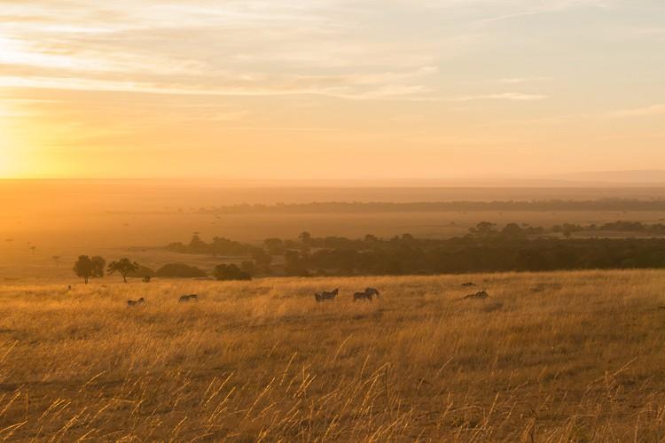 Die Sonne geht über dem Mara Triangle auf
