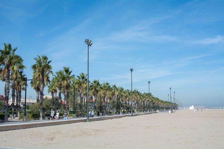 Palmen gesäumte Promande und endlos breiter Strand