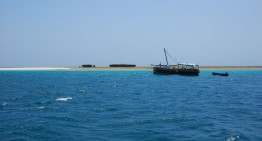 Mit der Dhow nach Wasini Island