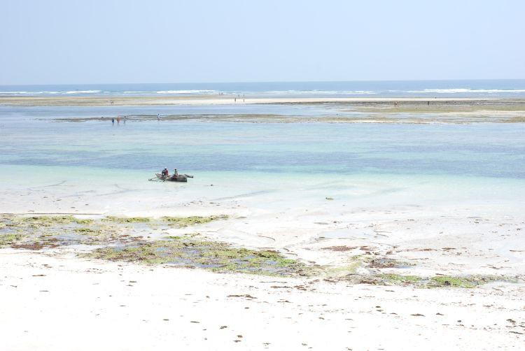 Diani Beach bei Ebbe