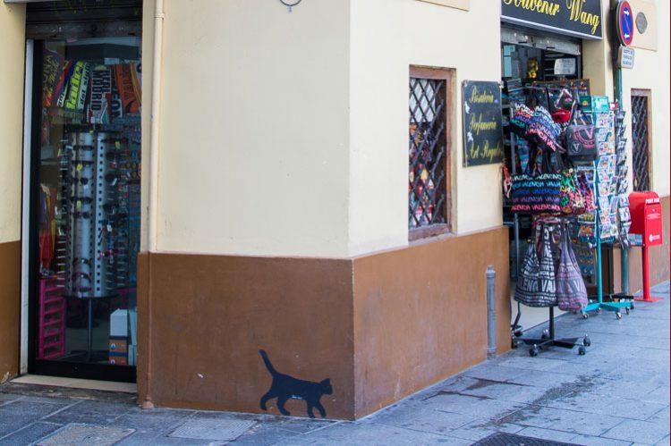Die kleine schwarze Katze von El Carmen