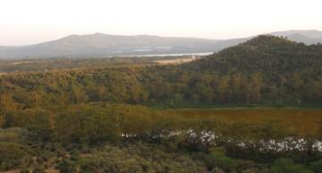 Meine erste Safari – Teil 3: Green Crater und Lake Naivasha