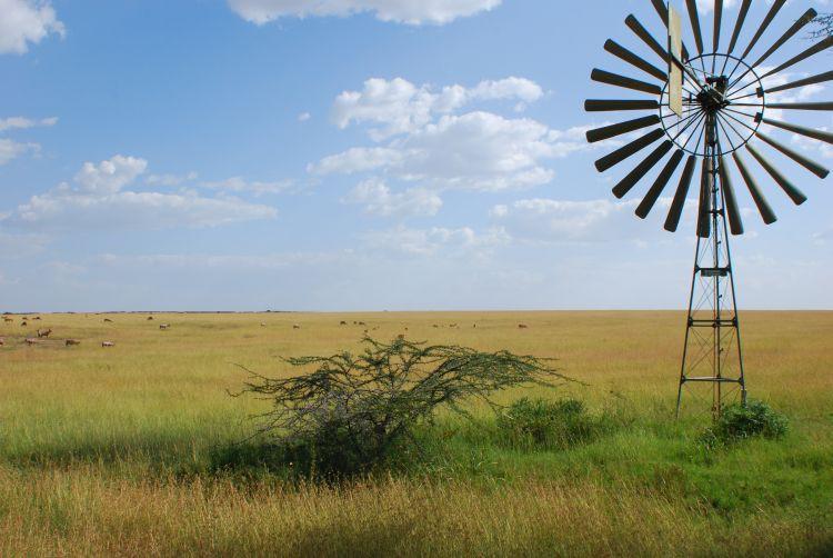 die Weite der Maasai Mara