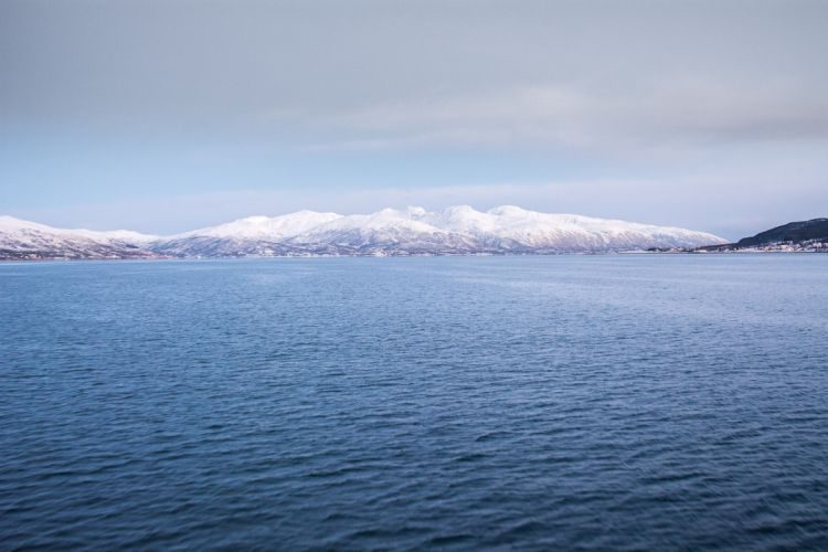 im Eismeer vor Tromsö
