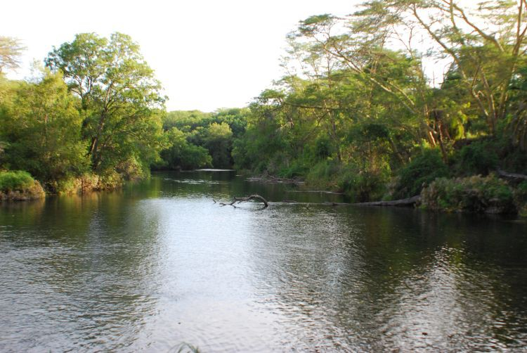 Mizma Springs im Tsavo West