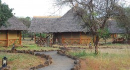 Meine erste Safari – Teil 1: Tsavo Ost und Tsavo West