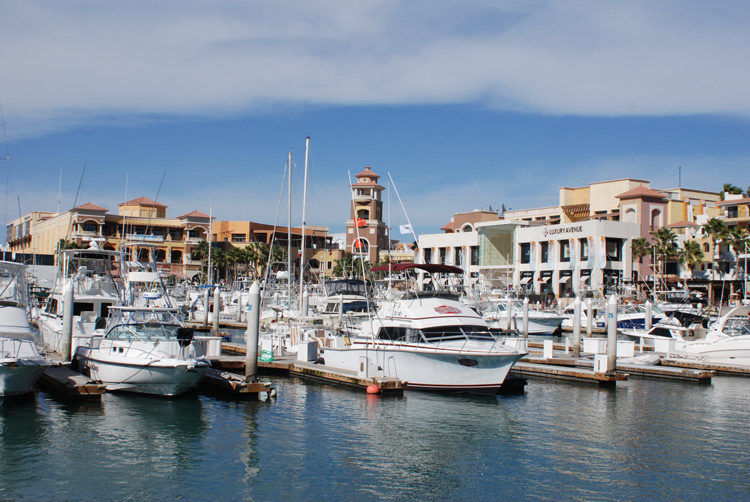 Hafen von Cabo San Lucas