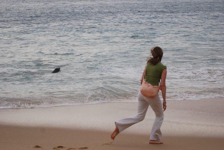 Strandleben von Cabo San Lucas