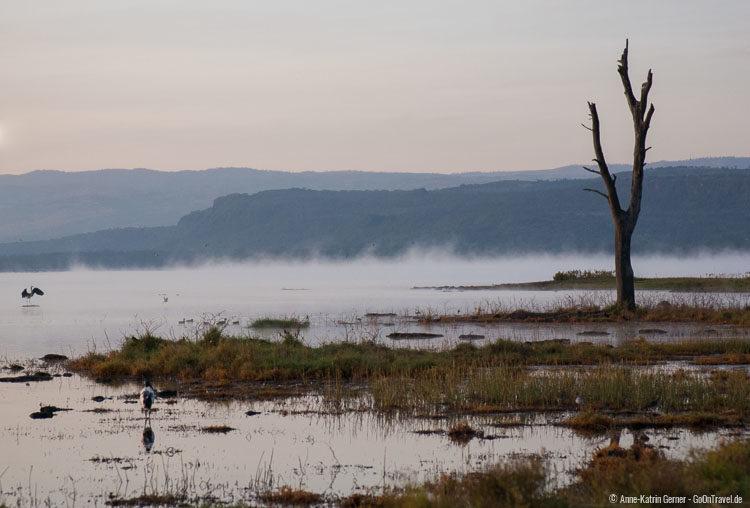 Lake Nakuru vor Sonnenaufgang