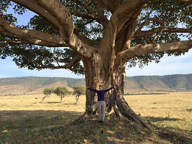 Frühstück unter dem Feigenbaum in der Maasai Mara