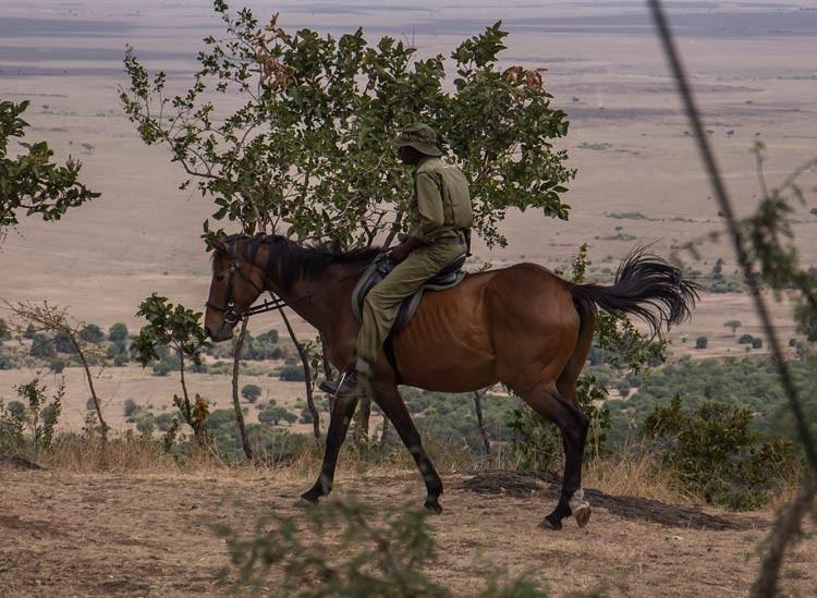 Ranger Fester auf dem Pferd
