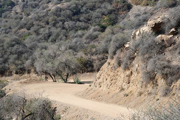 Mitten im Griffith Park von Los Angeles