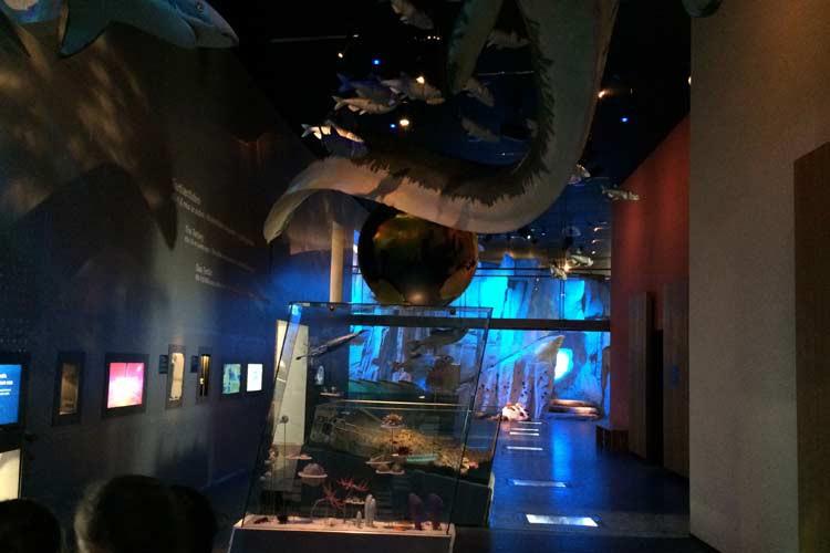 Ausstellung im Geocenter