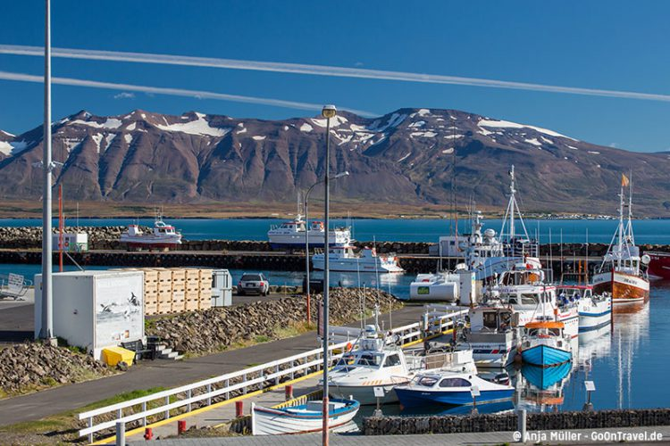 Der Hafen der Stadt Dalvik in den Nordfjorden von Island.