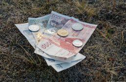7 wichtige Tipps für deine Island Reise