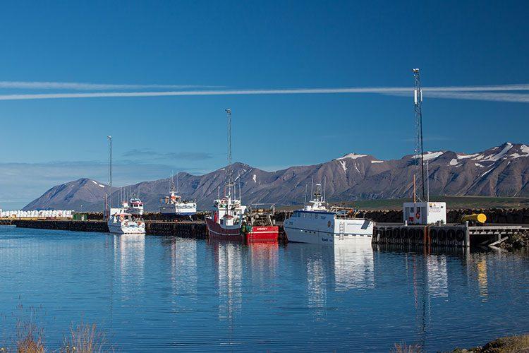 Der Hafen der Stadt Dalvik in den Nordfjorden.