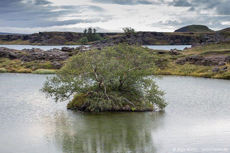 Der See Myvatn