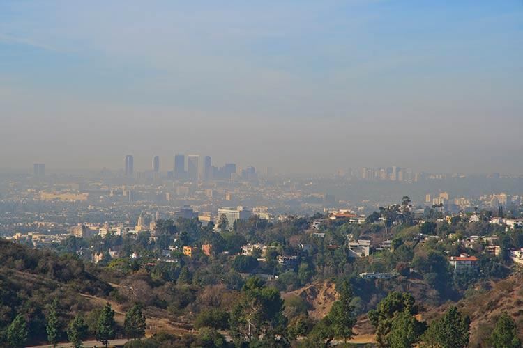 Blick auf Los Angeles vom Griffith Park aus